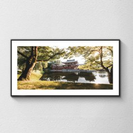 alessandro-bosio-travel-viaggi-reportage-japan-uji-byodoin-temple-color-print-stampa-fotografica-fine-art
