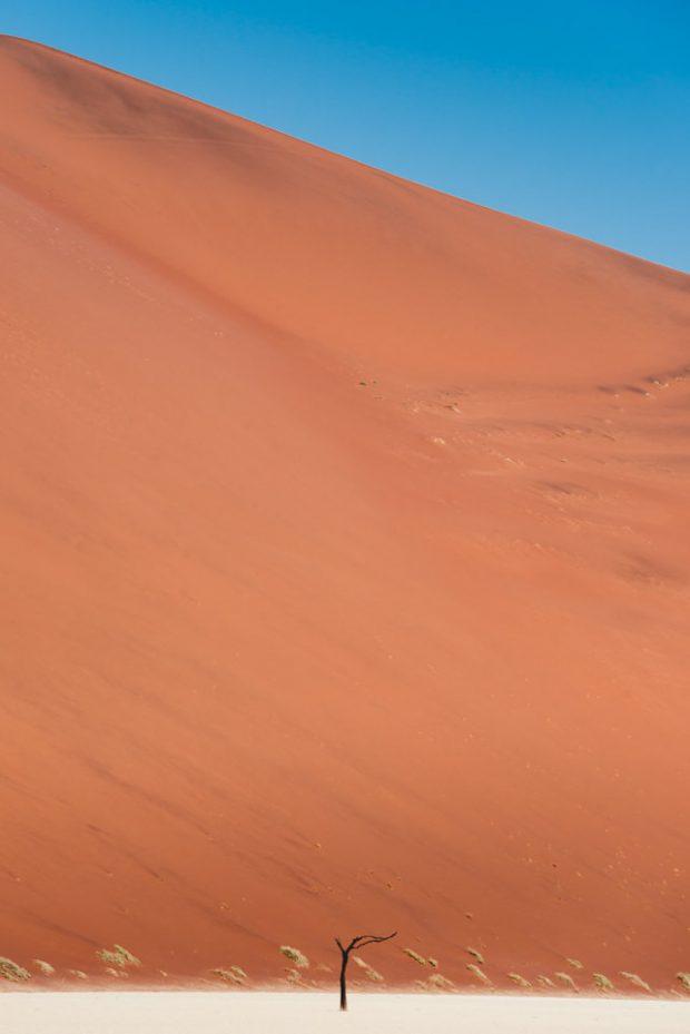 alessandro-bosio-namibia-hiddenvlei-stampa-fotografica-fine-art